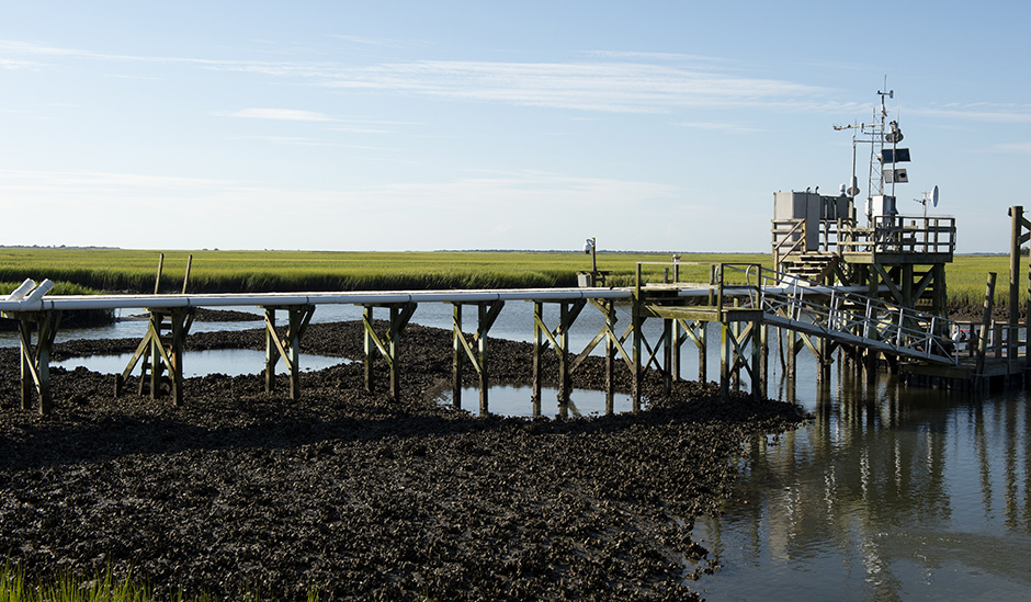oyster-landing-gallery-1