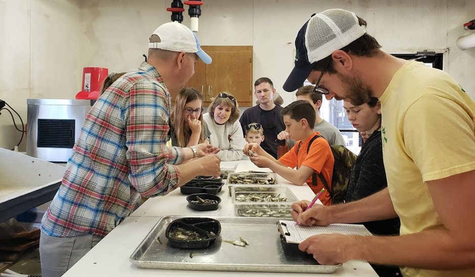 Picture of people sorting fish as a part of the Life of a NERRd program
